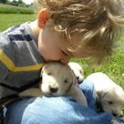 adorable All children should be taught at a very young age to love and respect animals