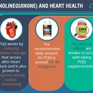 Effect of Pyrroloquinoline quinone (PQQ) on Heart Health