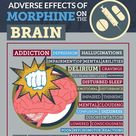 """Adverse or negative effects of morphine on the brain (INFOGRAPHIC) 