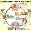 Stress and Emotions Creation Cycle