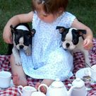 10 Beautiful Baby & Dog Friendships | Tinyme