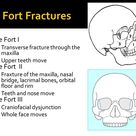 Classification of LeFort Fractures