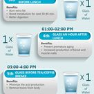 Healthy Time Schedule Of Drinking 8 Glass Of Water A Day with Benefits