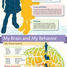 #Infographic with physical, social, cognitive, and emotional norms for #firstgrade. Awesome info! Of