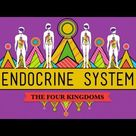Great Glands - Your Endocrine System: CrashCourse Biology #33