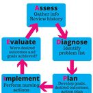 The Nursing Process