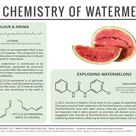 Watermelons are a popular, refreshing summer fruit. There?s also a lot of intriguing chemistry behin