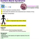 Guillian-barre Syndrome