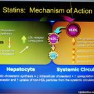 Hyperlipidemia drugs:  Statins: mechanism of action