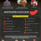 The Dangerous Effects of Crack Cocaine - it's sad to know what he had to deal with and what he got s