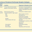 Functions of Peripheral Cholinergic Receptor Subtypes