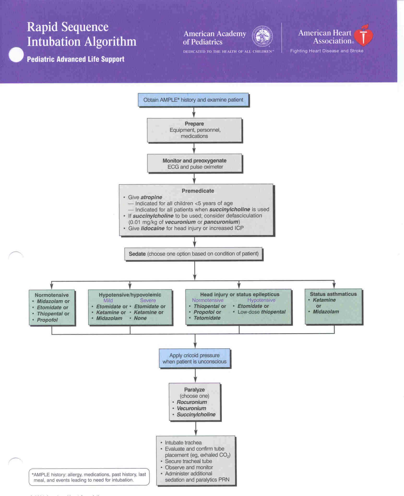 Rapid Sequence Intubation algorithm