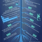 The History of MRI - Evolution of the MRI: Infographic