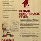 Unfortunately there is no vaccine to prevent dengue fever. However, the best way to try to prevent i