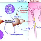 Evaluation of high sensitive C-reactive protein in development of CVD