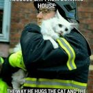 The cat's expression breaks my heart.
