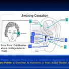 quit smoking acupuncture points