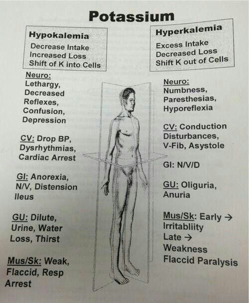 Potassium / hypokalemia / hyperkalemia - Cause & Symptoms