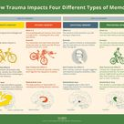 How trauma impacts four different types of memory
