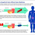 Grapefruit juice can interact with medications such as statins, anti- anxiety medications, allergy m