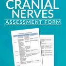 Assessment of the Cranial Nerves provides an insightful and vital information about the patient?s ne