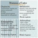 Hormones of Labor