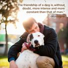 The friendship of a dog is irreplaceable.