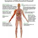 Symptoms of Mitochondrial Disease