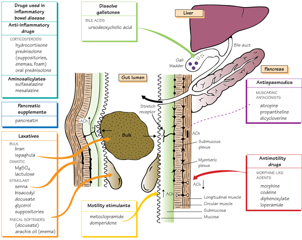 Drugs acting on the gastrointestinal tract II - motility and secretions