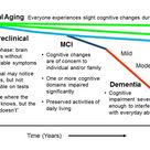 The Need to Find the Personal Lifestyle Factor Counteracting Cognitive Decline in Normal Aging