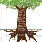 Forests in the sustainable development goals