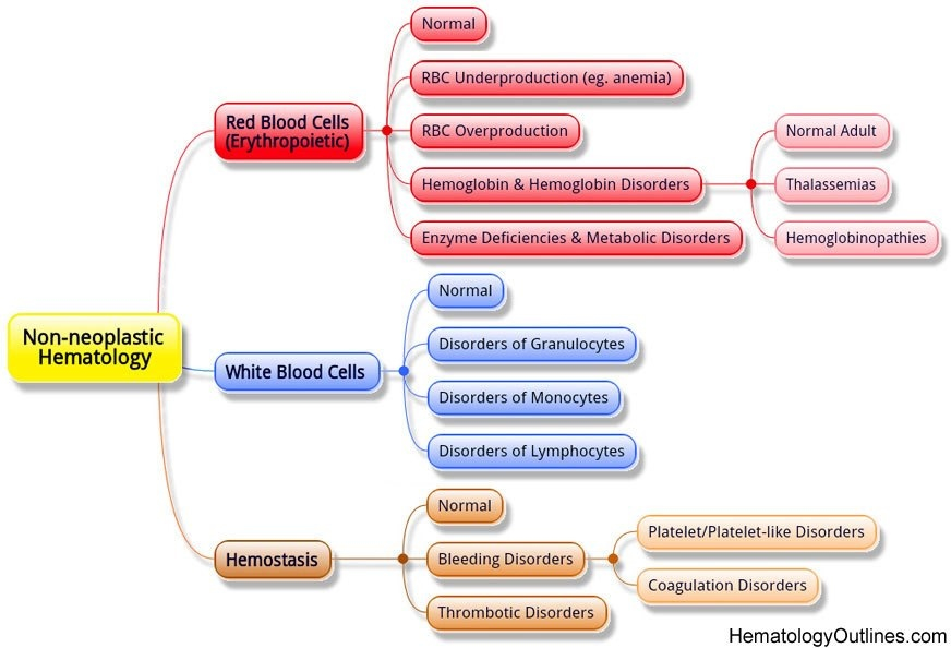 Hematology disorders overview