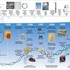The History of Human Genome: Timeline Infographic