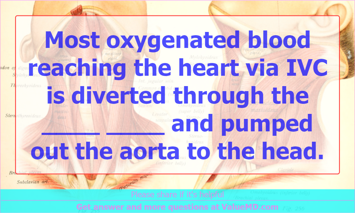 Most oxygenated blood reaching the heart via IVC is diverted through ...