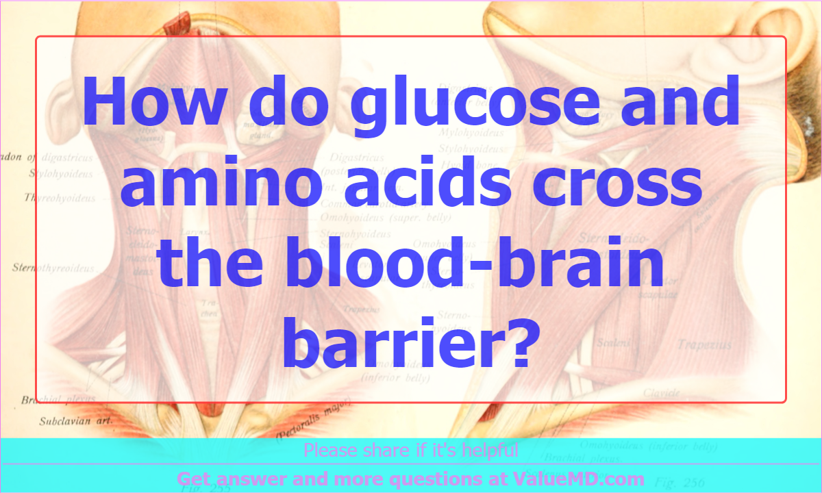 How do glucose and amino acids cross the blood-brain barrier ...