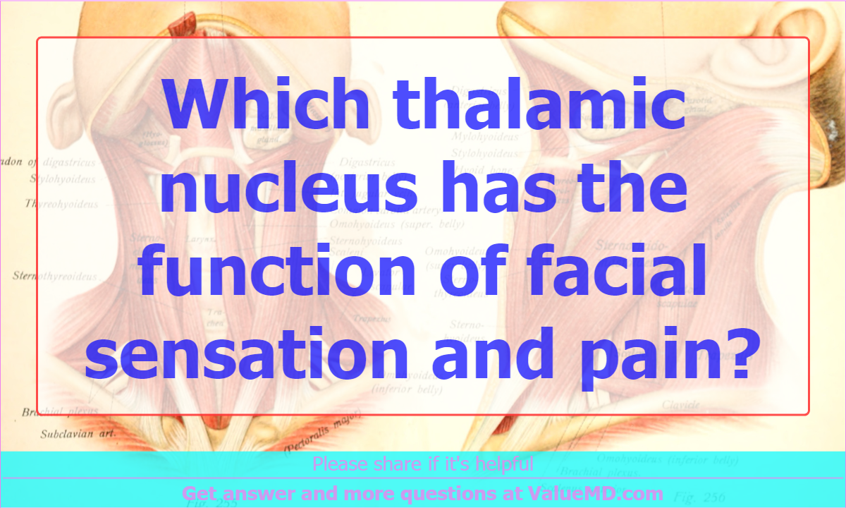 Which thalamic nucleus has the function of facial sensation and pain?