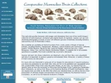 Comparative Mammalian Brain Collections