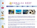 Egyptian Coral Reefs