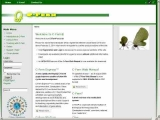 C-Fern: A Plant for Teaching and Research