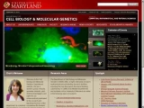 University of Maryland - Department of Cell Biology and Molecular Genetics