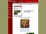 Forest Biology and Dendrology at Virginia Tech