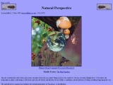 Natural Perspective: The Protoctist Kingdom (Protoctista)